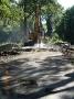 Przebudowa mostu na rzece Płonia w miejscowości Warszyn